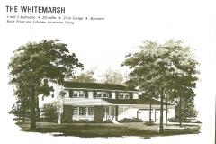 Wedgewood-Neighborhood-Washington-Township4